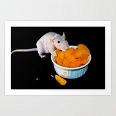 Perla the hairless rat Art Print