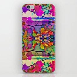 Thru the Kaleidoscope  iPhone Skin
