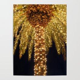 Palmetto Lights Poster