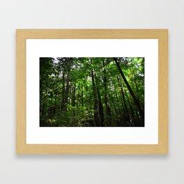 Forest // Smell The Green Framed Art Print