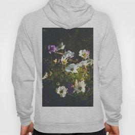 Anemone flowers Hoody