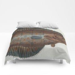 Vintage Illustration of a Flounder Fish (1785) Comforters