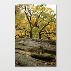 Central Park in the Fall Canvas Print