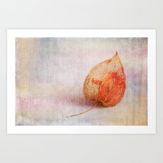 Physalis - JUSTART © Art Print