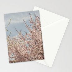 Sweet & Blue Stationery Cards