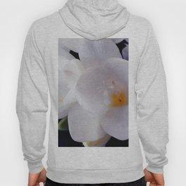 white flower with something orange Hoody