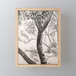 Black and White Tree Framed Mini Art Print