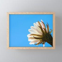 Desert Flower Framed Mini Art Print