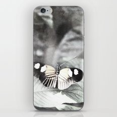 A Moment iPhone & iPod Skin