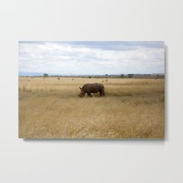 Rhino. Metal Print