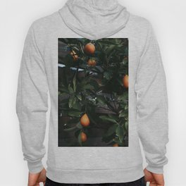 Fruit Tree Hoody