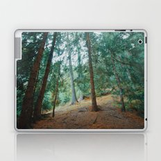 into the woods 01 Laptop & iPad Skin