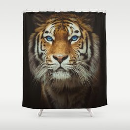 Wild Tiger with Blue eyes Shower Curtain