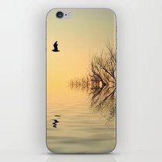 Dusk Flight 2 iPhone & iPod Skin