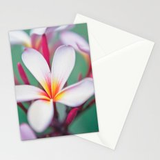 Pink Summer Stationery Cards