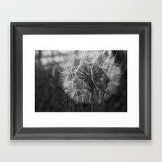 A Wish... Framed Art Print