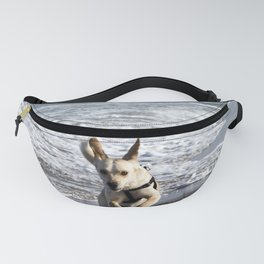 Flying Dog of Catania Beach in Sicily Fanny Pack