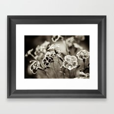 Where Wild Bee Wings Fly Framed Art Print