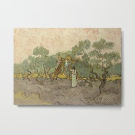 Women Picking Olives Metal Print