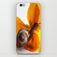 Little snail loves flowers iPhone & iPod Skin