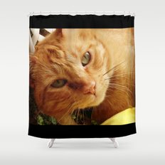 Chester Shower Curtain