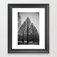 winter session Framed Art Print