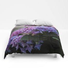 Big Hortensia flowers in front of a window Comforters