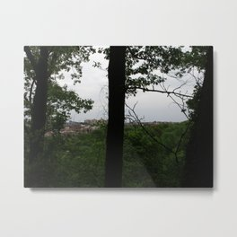 Inwood Hill Park, New York 4 Metal Print