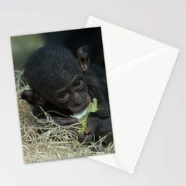 Cheeky Bonobo Baby Stationery Cards