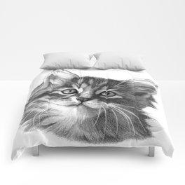 Maine Coon kitten G114 Comforters