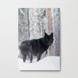 Prince of the Winterwoods Metal Print