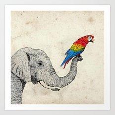 Elephant and Scarlet Macaw Art Print