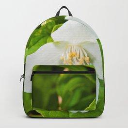 Wild Sicilian Jasmine Backpack