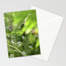 The Lively Ferns Stationery Cards