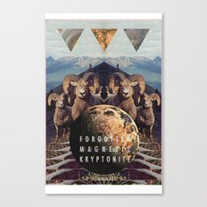 MYSTIC//FORGOTT Canvas Print