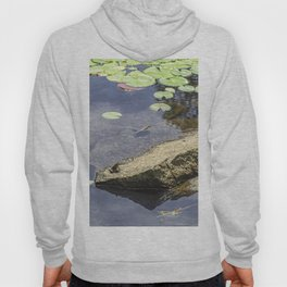 Froggy dreams Hoody