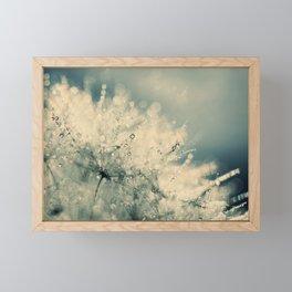 dandelion IX Framed Mini Art Print