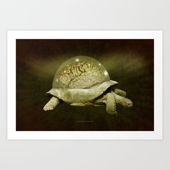 Slow Thinker 011 Art Print