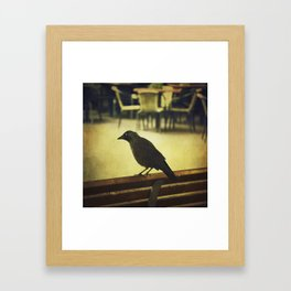 Watch the birdie Framed Art Print