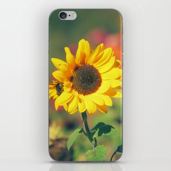 Bursting with Cheer iPhone & iPod Skin