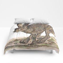 Hare II Comforters