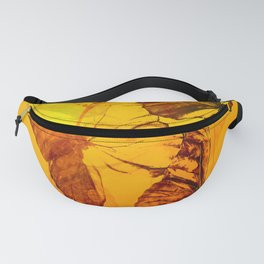 Lovely butterflies in sunset color - summer beauties on orange background Fanny Pack
