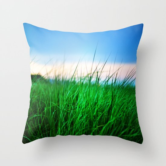 The first state Throw Pillow