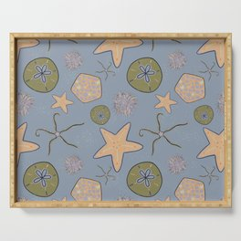 Sea stars and urchin - echinoderm beach print stormy blue Serving Tray