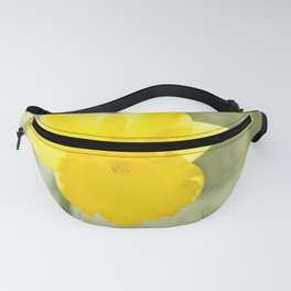 I wandered lonely etc. etc. Fanny Pack