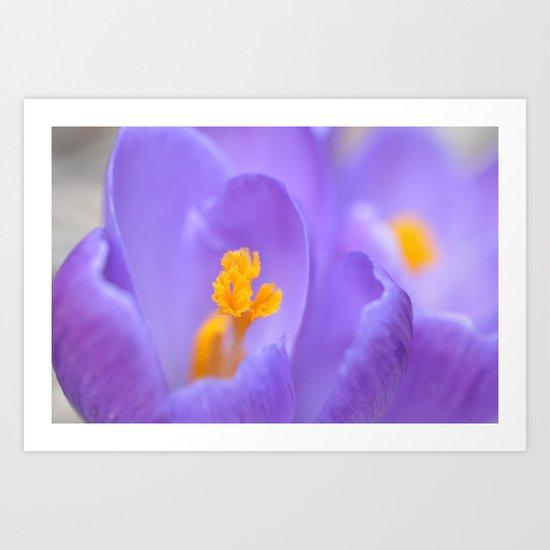 Flowers Feed the Soul Art Print