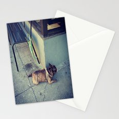 Dog Days Of Summer Stationery Cards