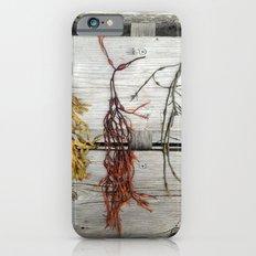 Deer Isle Seaweed  Slim Case iPhone 6s