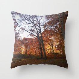 Longbrook Park Throw Pillow