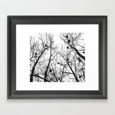 Branches, Nests, Home Framed Art Print